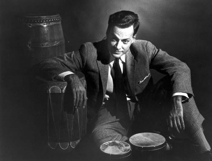 feynman-bongos